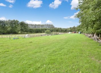 Thumbnail 3 bed equestrian property for sale in Churt, Farnham, Surrey