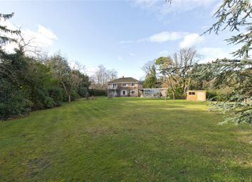 Thumbnail Land for sale in New Road, Esher, Surrey