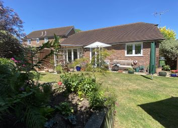3 bed detached bungalow for sale in Pulens Lane, Petersfield GU31