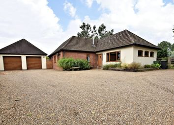 Thumbnail 4 bed detached bungalow for sale in West Harling Road, East Harling, Norwich