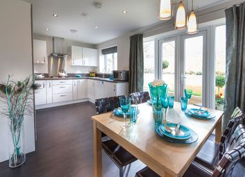 Thumbnail 3 bedroom semi-detached house for sale in Russell Grove, Werrington, Staffordshire