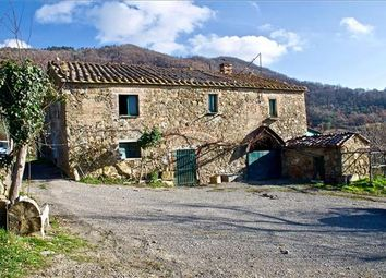 Thumbnail 4 bed farmhouse for sale in 53047 Sarteano Province Of Siena, Italy