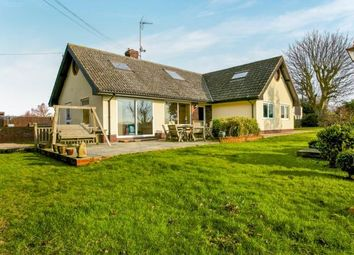 Thumbnail 7 bed bungalow for sale in Kedington, Haverhill, Suffolk