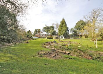 Thumbnail 4 bed property for sale in School Road, Bransgore, Christchurch