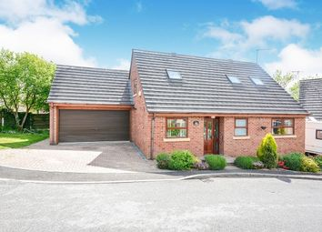Thumbnail 3 bed detached house to rent in Polyfields Lane, Bolsover, Chesterfield