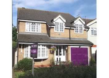 Thumbnail 4 bedroom detached house for sale in Herbert Road, Ipswich