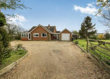 Thumbnail 3 bed bungalow for sale in Harlow, Essex