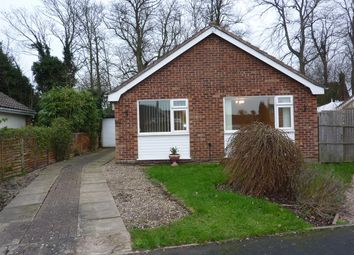 Thumbnail 3 bed bungalow to rent in Ludham, Great Yarmouth