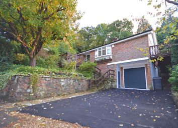 Thumbnail 4 bed bungalow to rent in Beech Hill Road, Headley, Bordon