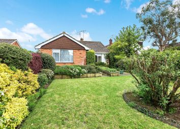 Thumbnail 3 bed bungalow for sale in Ripley, Woking