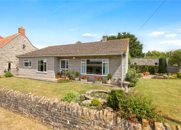 Thumbnail Detached bungalow for sale in Somerton Door Bungalow, Somerton Door Drove, Somerton, Somerset