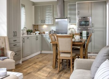 """4 bed detached house for sale in """"Shaftesbury"""" at """"Shaftesbury"""" At Walters Field, Roundswell, Barnstaple EX31"""