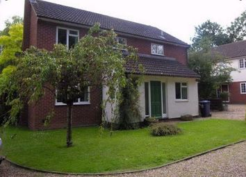 Thumbnail 4 bed detached house to rent in Graveley Way, Hilton, Huntingdon