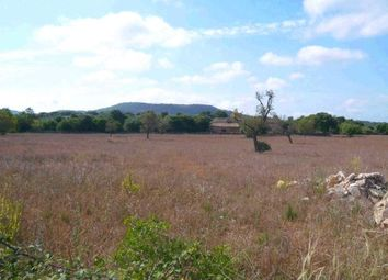 Thumbnail 4 bed country house for sale in Spain, Mallorca, Felanitx, Cas Concos