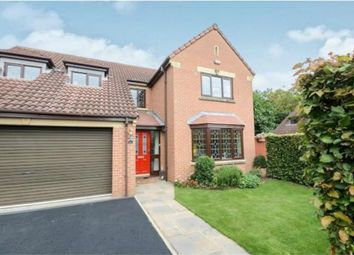 Thumbnail 4 bed detached house for sale in Alness Drive, Acomb Park, York
