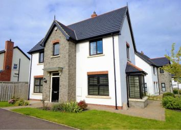 Thumbnail 3 bed detached house for sale in Coopers Mill Heights, Dundonald