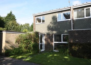 Thumbnail 3 bed property to rent in The Walnuts, Branksome Road, Norwich