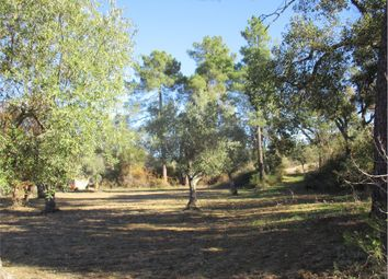 Thumbnail Farm for sale in Penamacor (Parish), Penamacor, Castelo Branco, Central Portugal