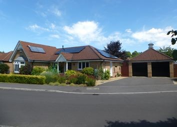 Thumbnail 3 bed detached bungalow for sale in Riverbourne Road, Laverstock, Salisbury