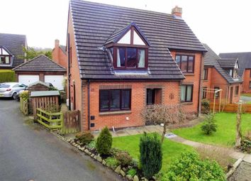 Thumbnail 4 bed detached house for sale in 10, Dol Las, Abermule, Montgomery, Powys