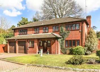 Thumbnail Room to rent in Pans Gardens, Camberley