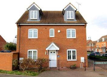 Thumbnail 4 bed detached house to rent in Redshank Way, Hampton Vale, Peterborough