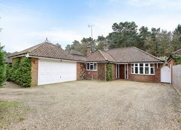 Thumbnail 3 bed detached bungalow for sale in Nine Mile Ride, Finchampstead