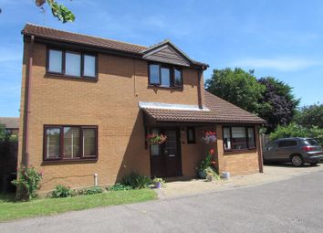 Thumbnail 4 bedroom detached house to rent in The Hornbeams, Little Oakley, Harwich