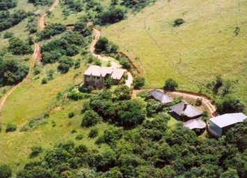 Thumbnail 3 bed farm for sale in Weltevreden Road, Lydenburg, South Africa