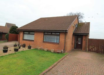 Thumbnail 1 bed bungalow to rent in Locher Crescent, Houston