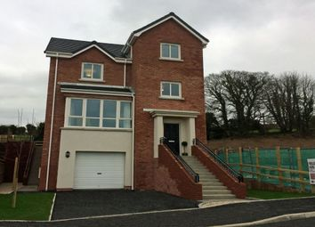 Thumbnail 4 bed detached house for sale in Millreagh Development, Carrowreagh Road, Dundonald