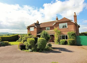 Thumbnail 5 bed detached house for sale in Broadway Hill, Horton, Nr Ilminster