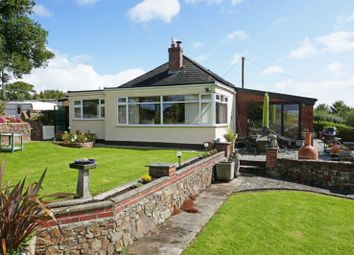 Thumbnail 3 bed bungalow for sale in Bridgerule, Holsworthy