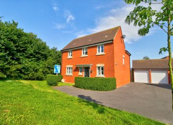 Thumbnail 4 bed detached house for sale in Primrose Walk, Bridgwater