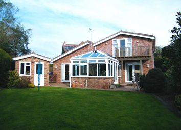 Thumbnail 4 bedroom bungalow for sale in Exmouth, Devon