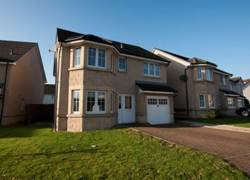 Thumbnail 4 bedroom detached house for sale in Sandpiper Meadow, Alloa