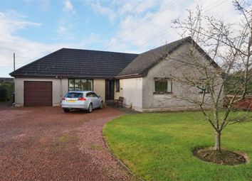 Thumbnail 3 bed detached bungalow for sale in Branxholme, Main Street, Blairingone, Kinross-Shire