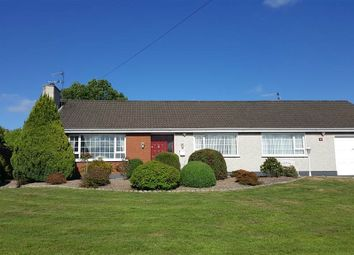 Thumbnail 4 bed bungalow for sale in Fullerton Road, Newry
