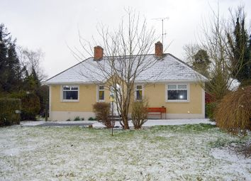 Thumbnail 2 bed detached house for sale in Lambstown, Glynn, Barntown, Wexford