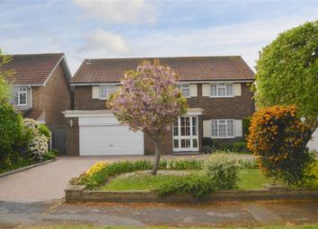 Thumbnail 4 bed detached house for sale in Weare Gifford, Shoeburyness, Essex