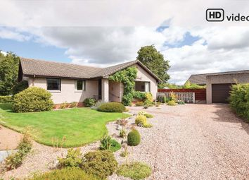 Thumbnail 3 bed detached bungalow for sale in Armadale Crescent, Balbeggie, Perth