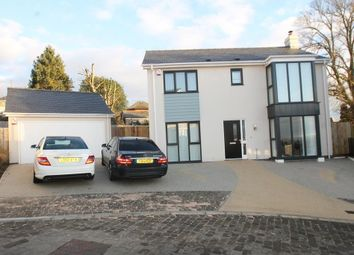 Thumbnail 4 bedroom detached house for sale in Pine Gardens, Plymouth