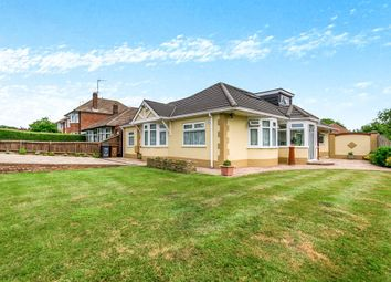 Thumbnail 5 bed detached bungalow for sale in Booth Lane North, Abington, Northampton