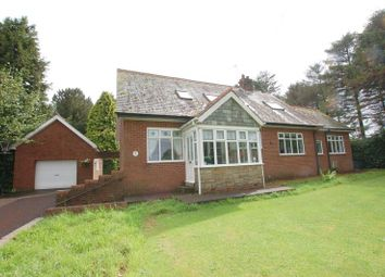 Thumbnail 4 bed detached house for sale in Stamfordham Road, Nr. Darras Hall, Ponteland