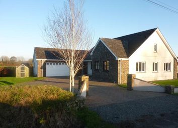 Thumbnail 3 bed bungalow to rent in Llangynin, St Clears, Carmarthenshire