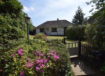 Thumbnail 3 bed bungalow for sale in Carters Corner, Hailsham, East Sussex