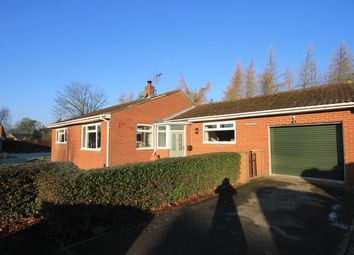 Thumbnail 3 bed detached bungalow for sale in Great Langton, Northallerton