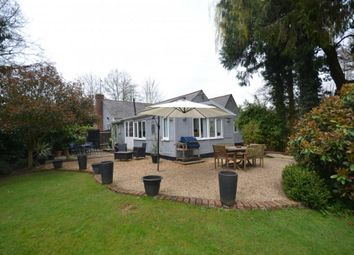 Thumbnail 4 bed detached bungalow for sale in North Hall Road, Quendon, Saffron Walden