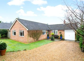 Thumbnail 3 bed detached bungalow for sale in Fairview Road, Headley Down, Hampshire