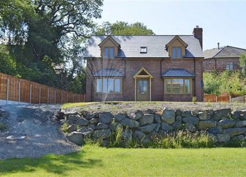 Thumbnail 4 bed detached house for sale in New House, Mill Meadow, Churchstoke, Montgomery, Powys